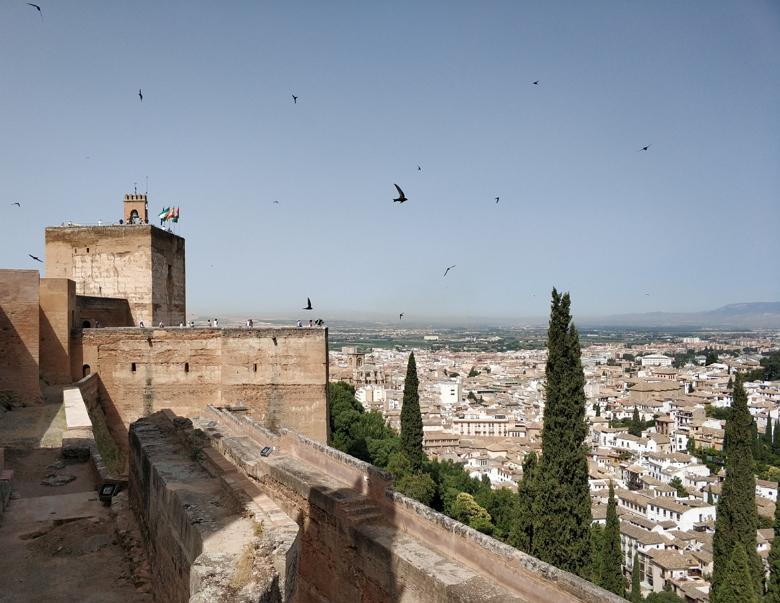 Stedentrip Special: Granada